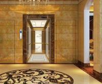 标准曳引家用电梯--海逸王墅案例