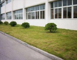 厂区绿化与养护