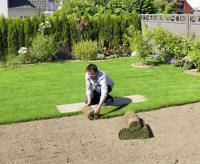草坪虫害防治
