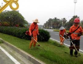 上海道路綠化養護