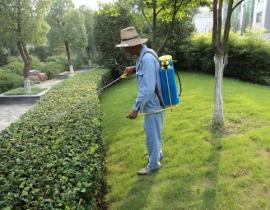 上海園林綠化養護