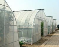 张家口温室大棚建设
