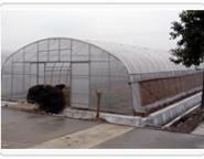 盘锦温室大棚建设