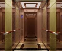 家用常规别墅电梯--富力津门湖黛湖花园案例