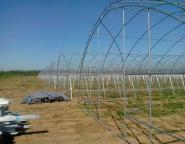 保定温室大棚建设