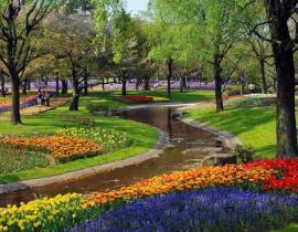 市政公園綠化養護