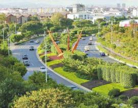 市政道路綠化養護