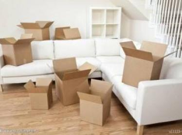 沈阳正规搬家公司价目表浅谈新房内如何选购花草