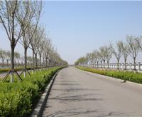 道路bwin代理带bwin亚洲官网